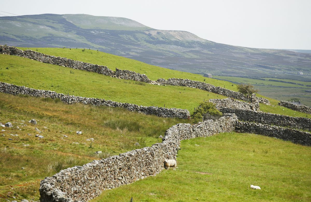 The Yorkshire Dales is a walker's paradise, with everything from gentle stream-side rambles to energetic hikes across wild moorland