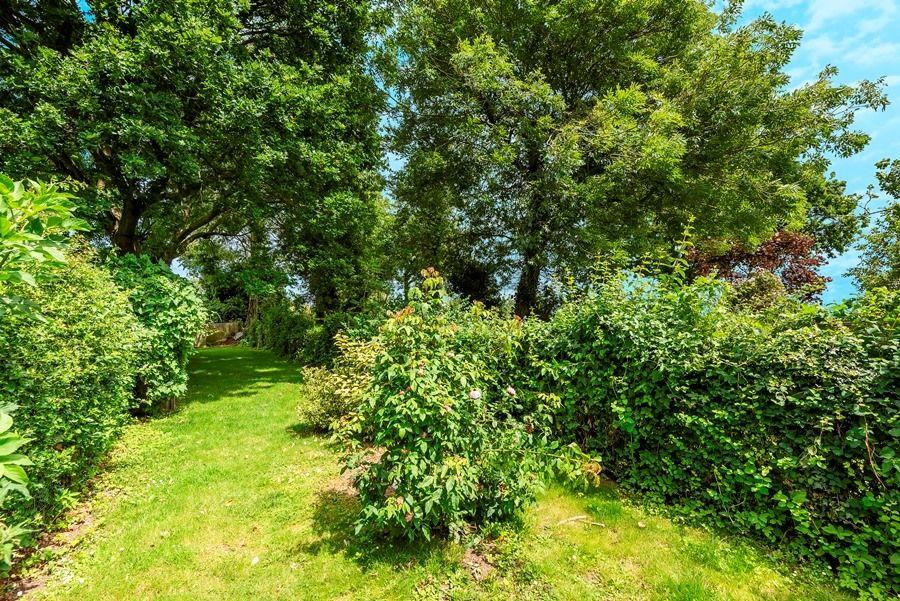 Grasshopper Cottage | Garden