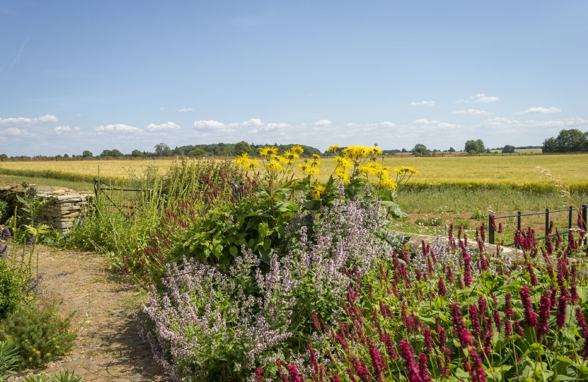 Stunning views from the wildflower garden looking out onto the beautiful countryside