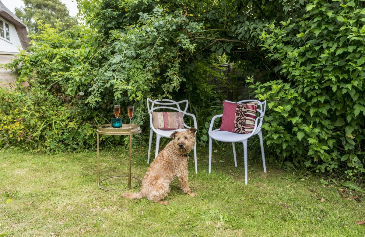 East Burton Farmhouse welcomes up to two well behaved dogs
