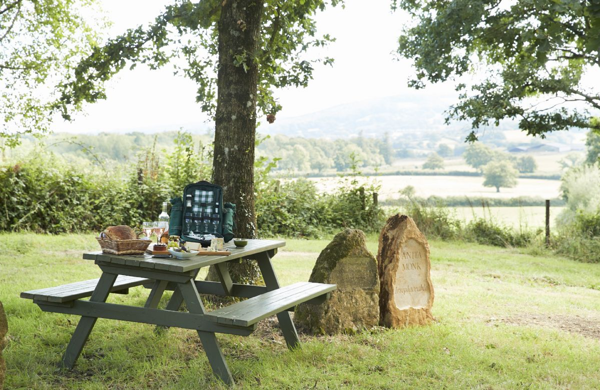 Perfect picnic location with standing stones in Downclose Woods