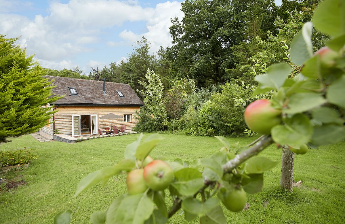 Orchard View is nestled in a peaceful spot within the Shropshire Hills, an Area of Outstanding Natural Beauty