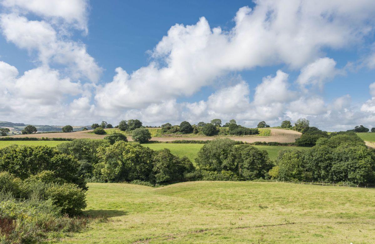 Far reaching views across the Marshwood Vale