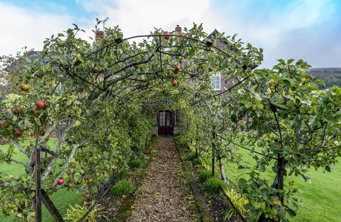 Hearn Lodge has its own apple tunnel and an adjacent walled garden