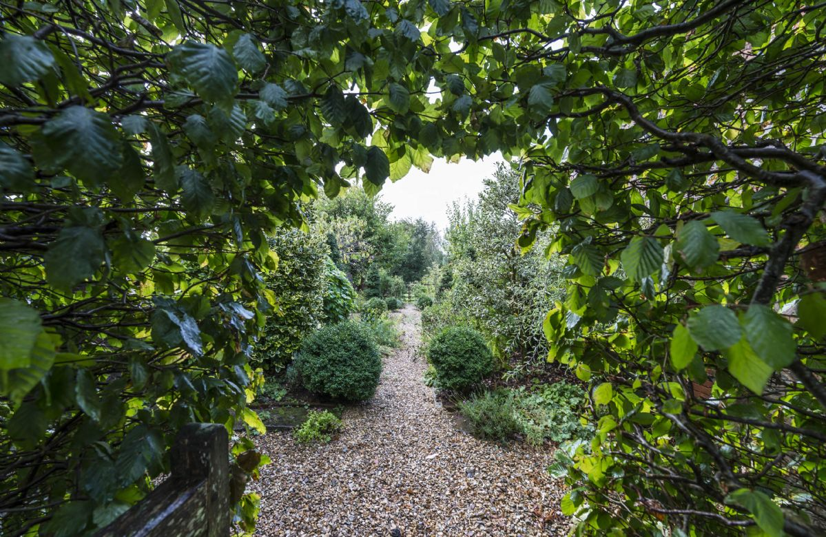 Explore the stunning gardens at Hearn Lodge