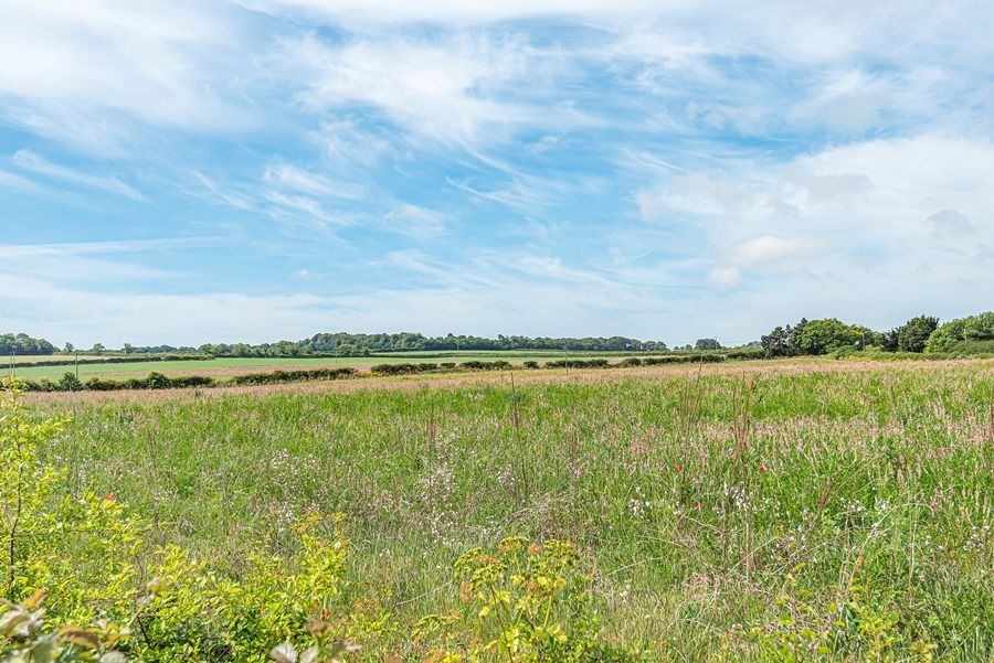 Field Cottage in Brancaster Staithe | Field views