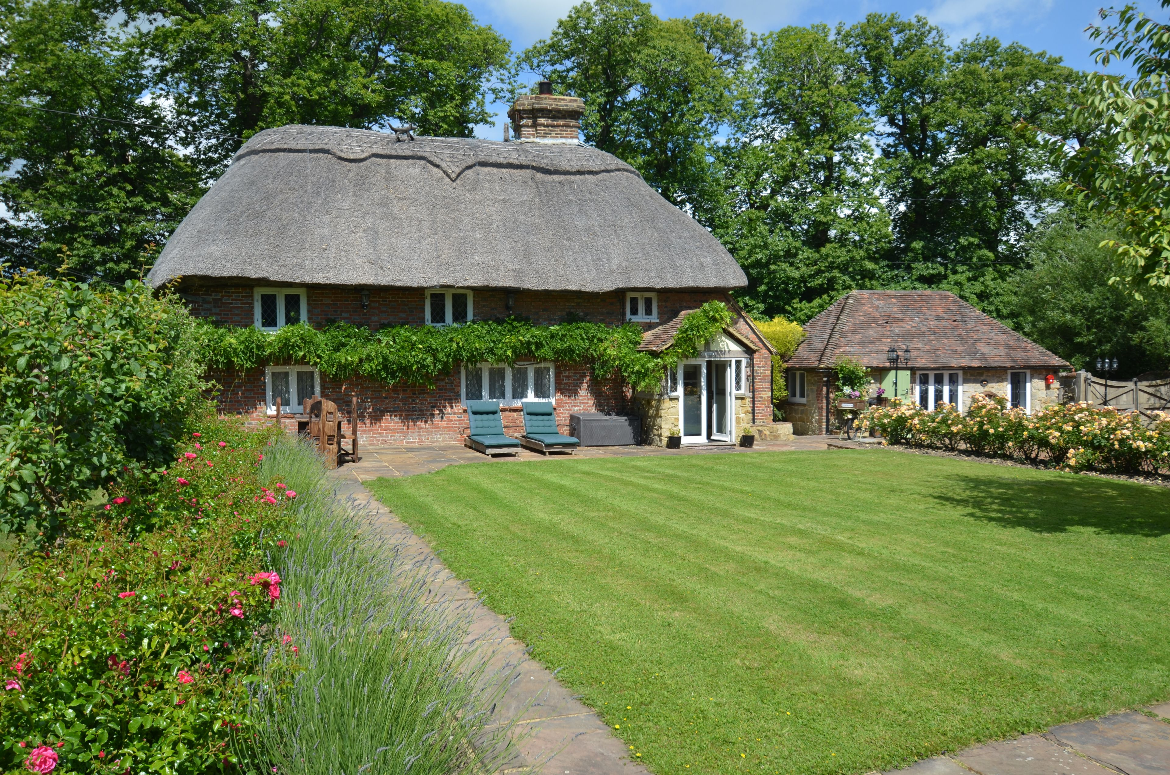 The Thatched Cottage and Piglet Lodge - Main Image