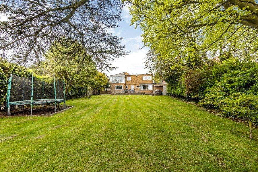 Ongar Lodge | Back garden