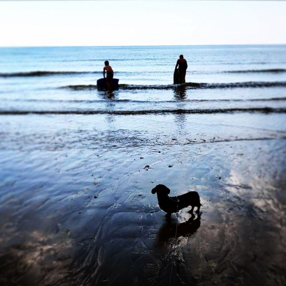East Beach Getaway  - Littlehampton