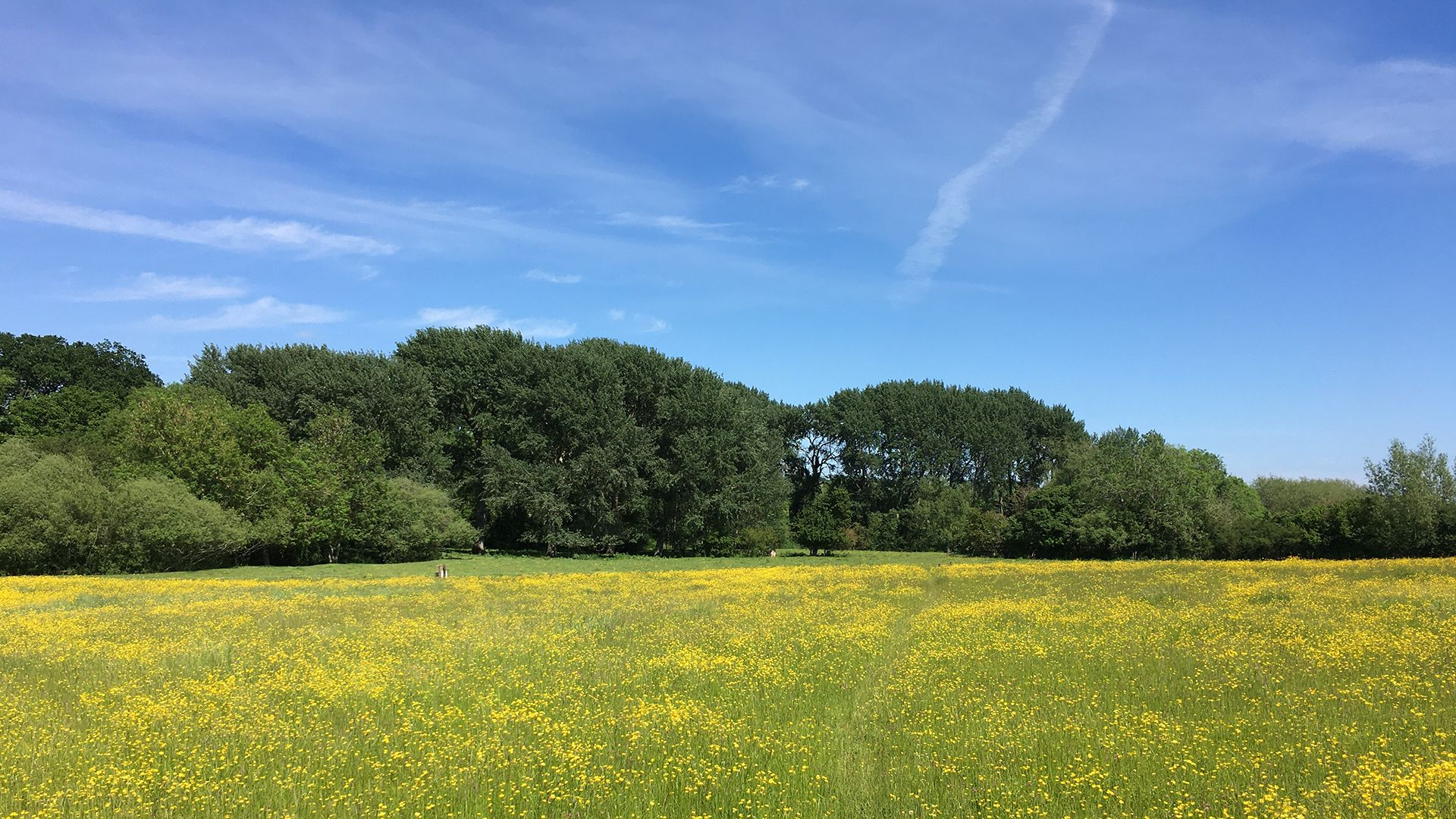 Local Cotswold countryside, Bolthole Retreats