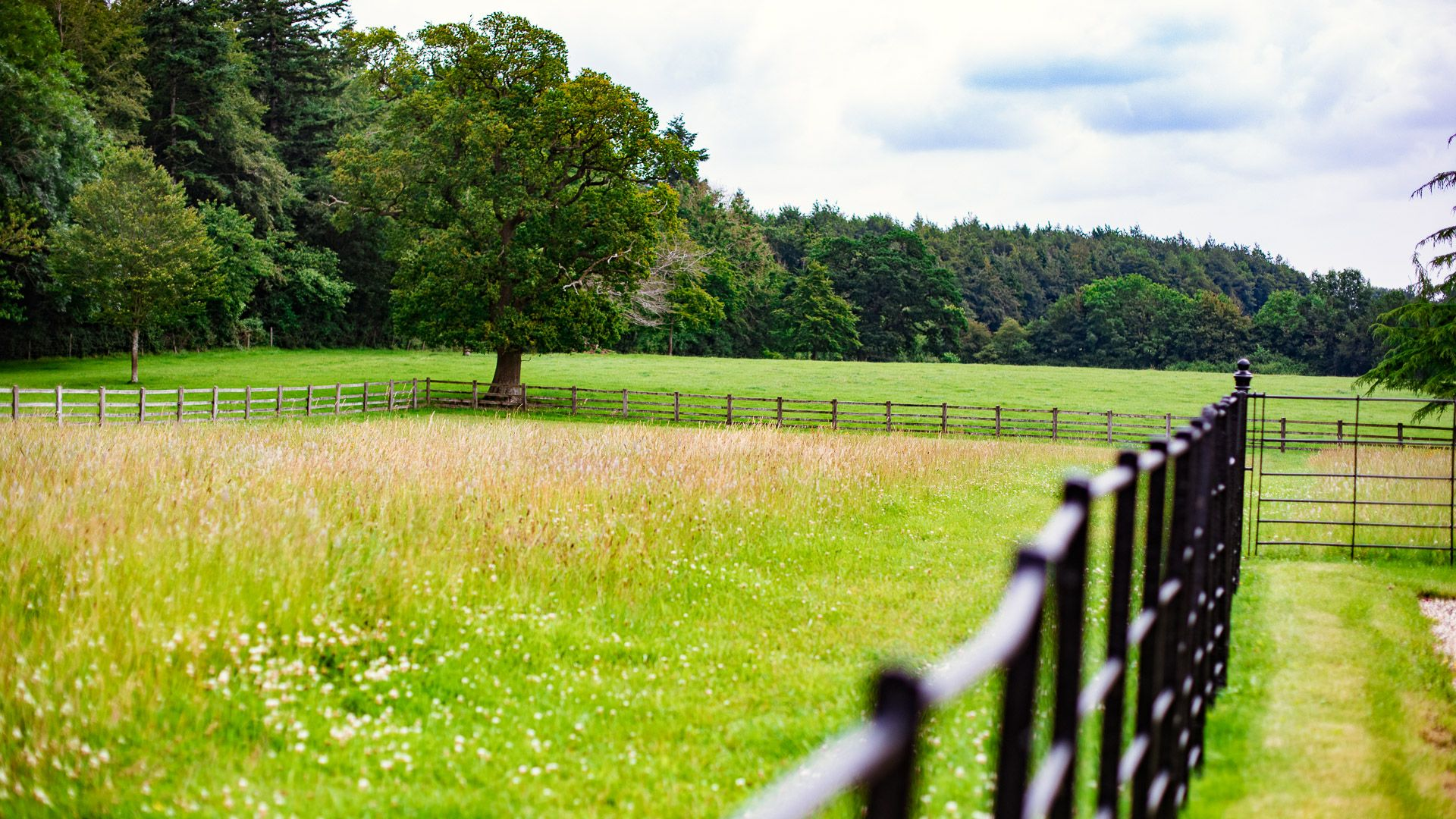 Adjacent fields, Hayloft at Newbarn Farm, Bolthole Retreats