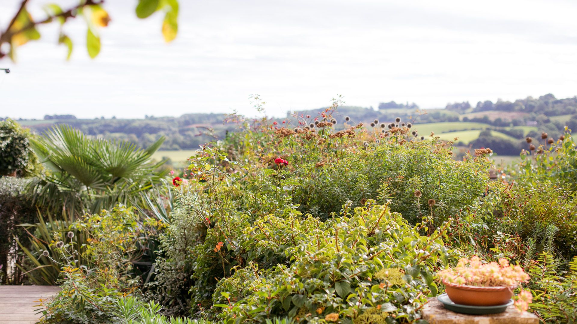 View over the Garden, Honeysuckle Cottage, Bolthole Retreats