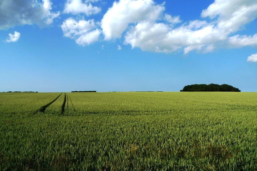 Long View   Countryside views