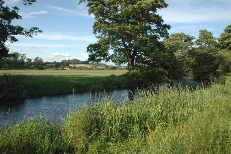 Large Image - The River Rother beside the house