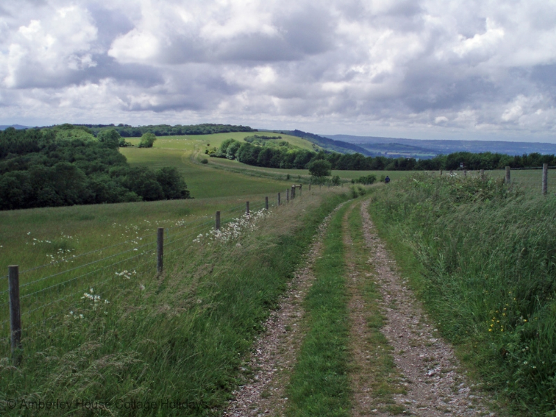 Large Image - The South Downs Way due south at West Burton