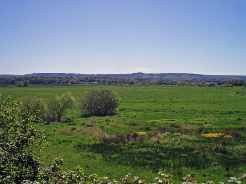 Large Image - The South Downs from Pulborough Brooks