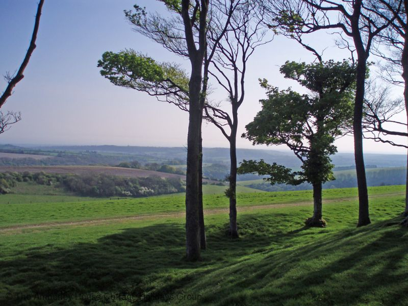 Large Image - Looking south from Chanctonbury Ring