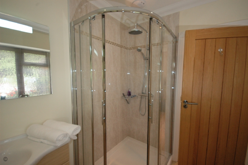 Large Image - The downstairs shower room