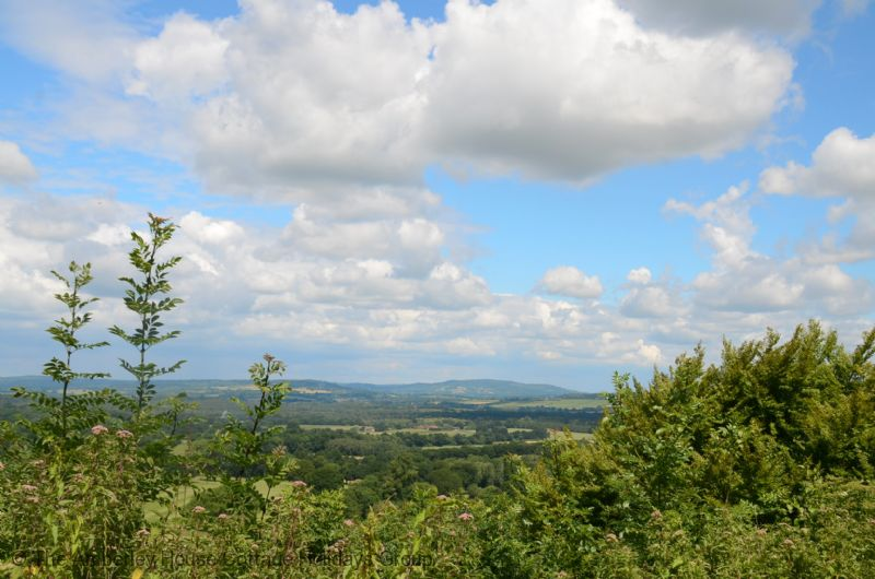 Large Image - Views of Blackdown in the South Downs National Park