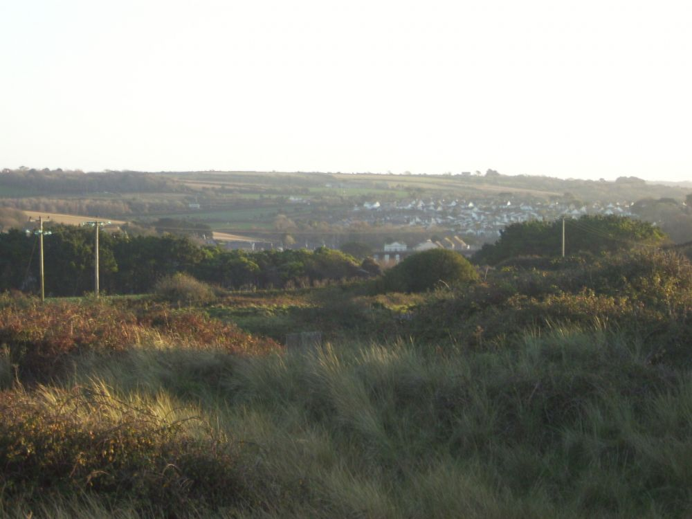 View down over the dunes