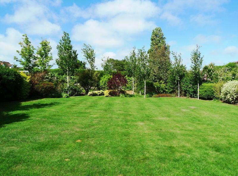 Skylark | Garden
