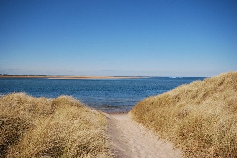 Heather Cottages - Plover   Budle Bay   Northumbria Coast