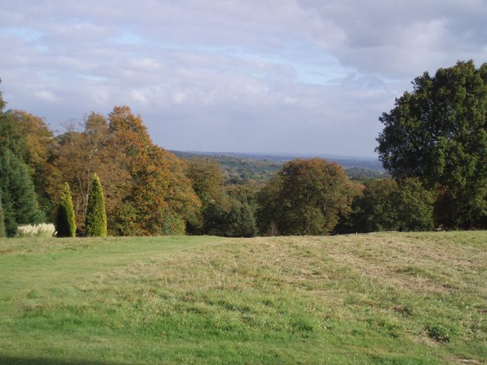 Large Image - The view from Nymans