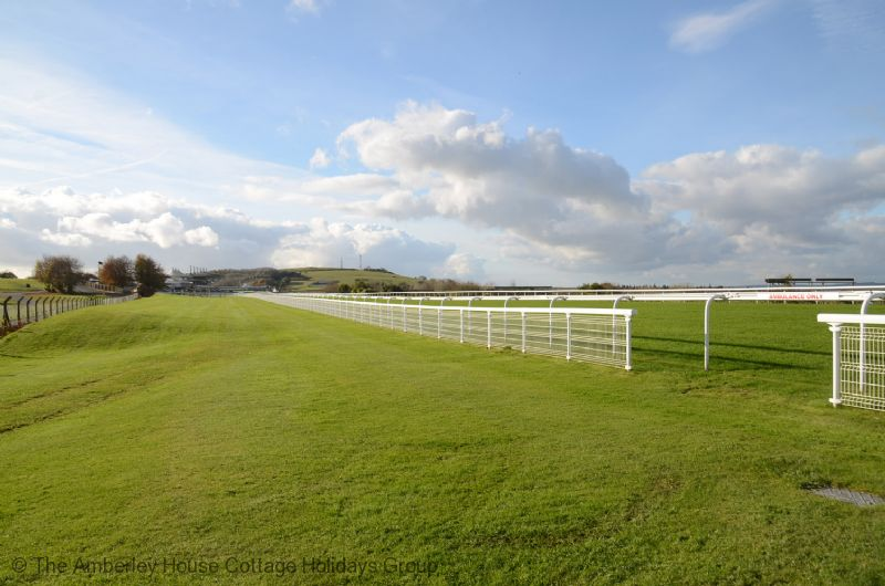 Large Image - Goodwood Racecourse with Trundle Hill beyond