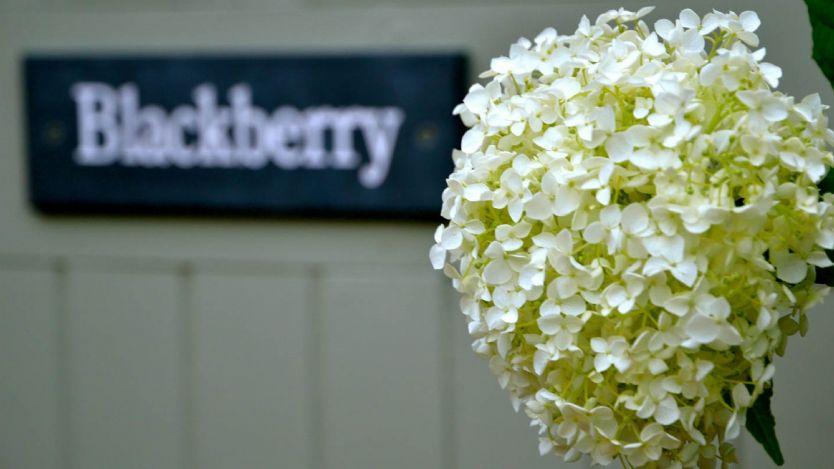 Blackberry Barn