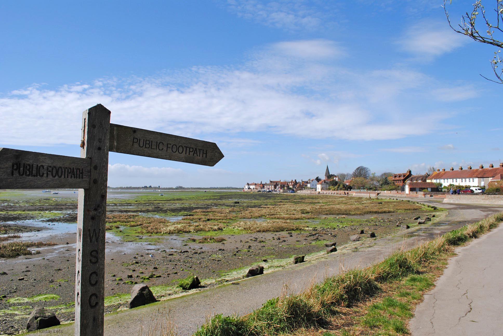 Oysters, Bosham