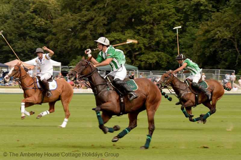 Large Image - Polo at Cowdray Park