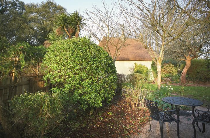 Enclosed, lawned garden with patio area