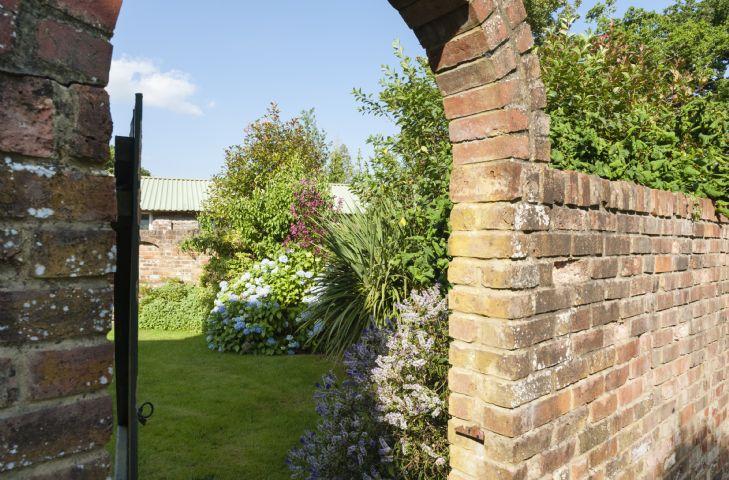 Back garden and patio