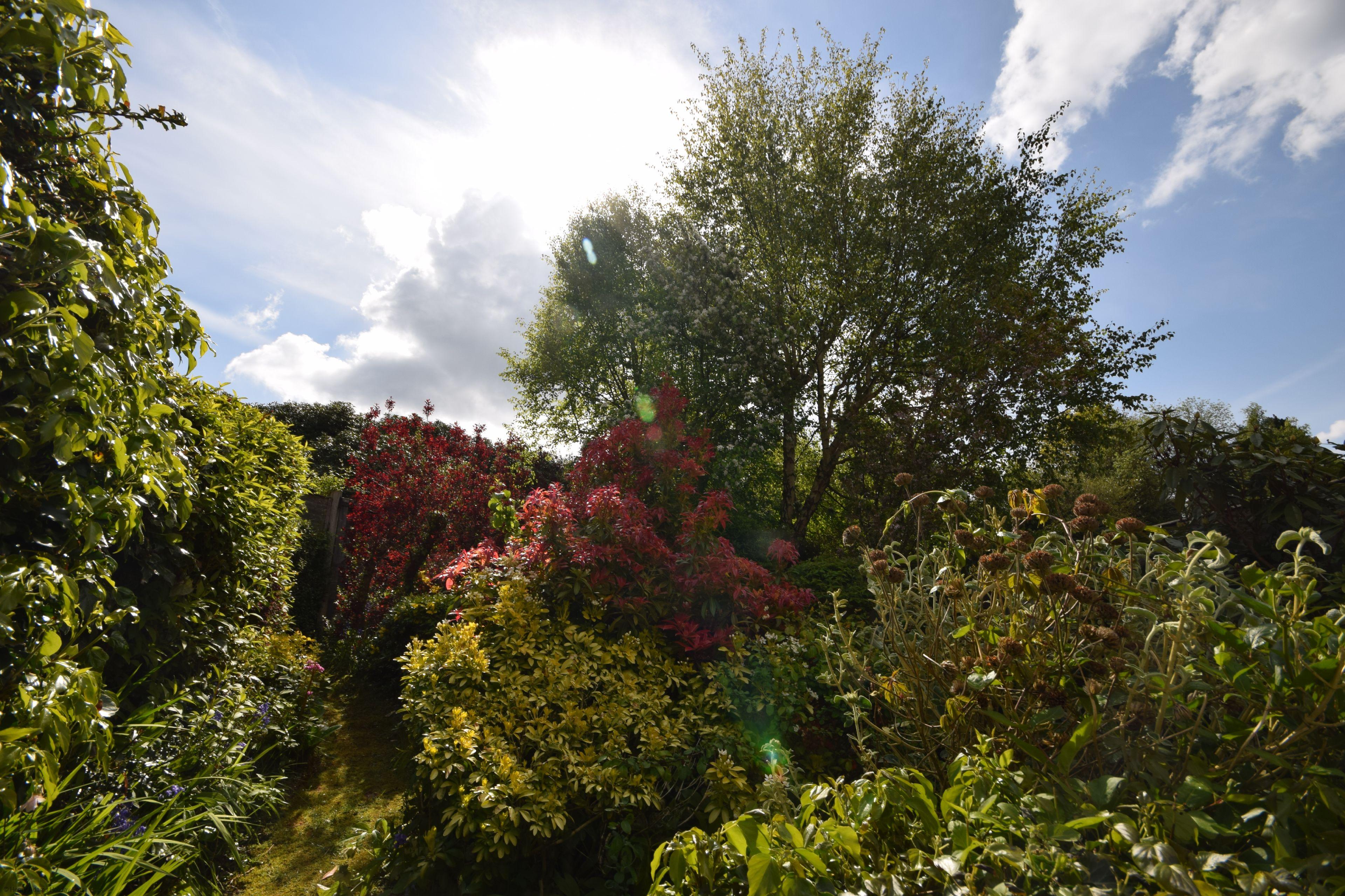 Birch End, Midhurst