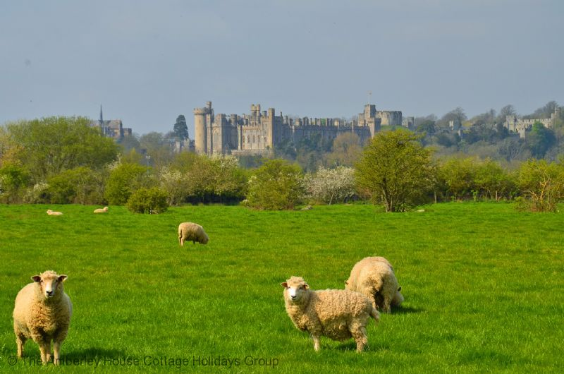 Large Image - Arundel Castle views from Warningcamp