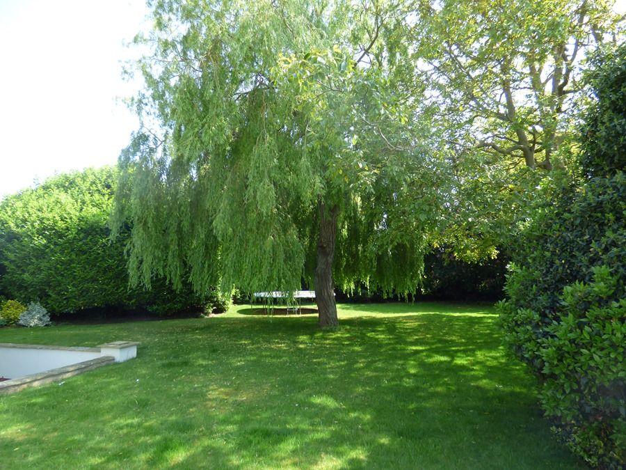 Walnut Pastures | Garden