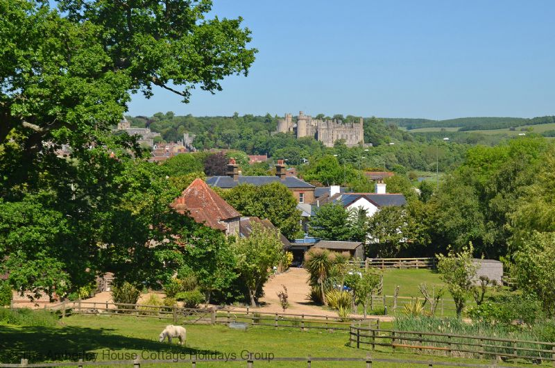 Large Image - Views from the neighbouring paddock towards Arundel Castle