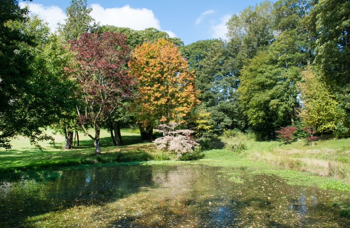 A picturesque lake sits within the private grounds