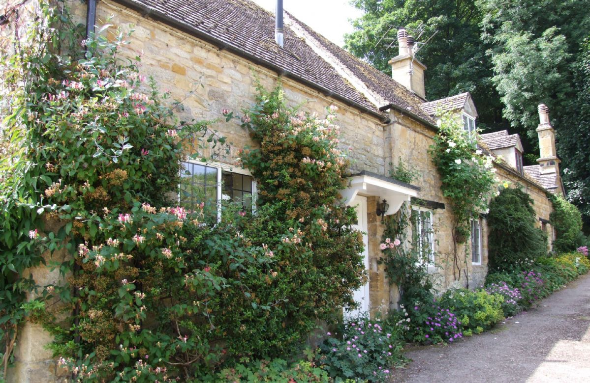 Keytes Cottage in bloom