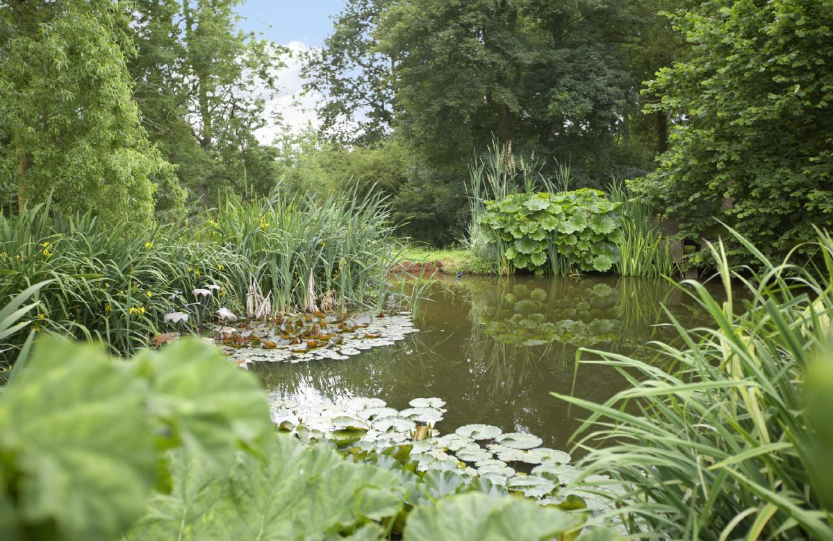 There is a very large fenced pond/lake in the gardens and a brook at the bottom of the woods