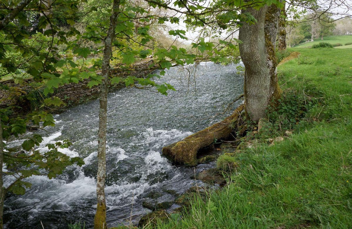 The stream leading to the lake