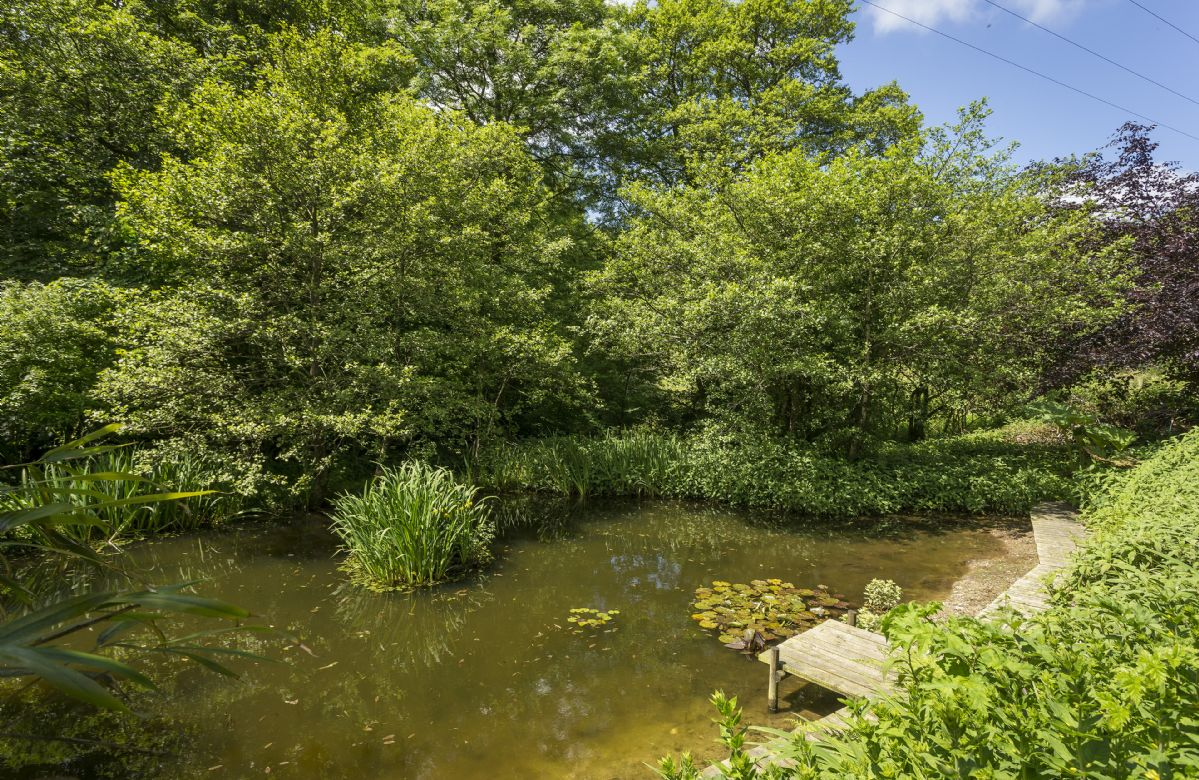 Pathway leading down to a large spring-fed pond, a haven for the local wildlife. The pond area is accessed only through a locked gate