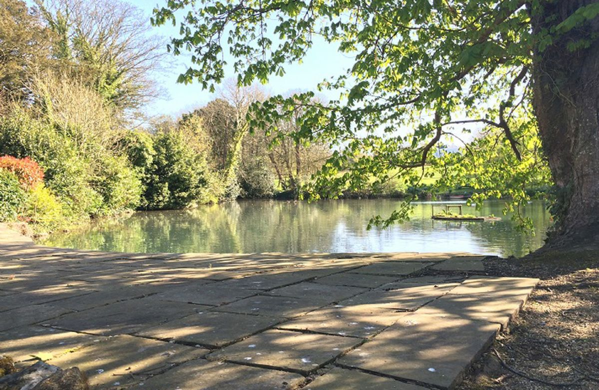 There is a crystal clear stream that runs from the pond at Westover House gate lodge opposite along the length of Winkle Street and beyond