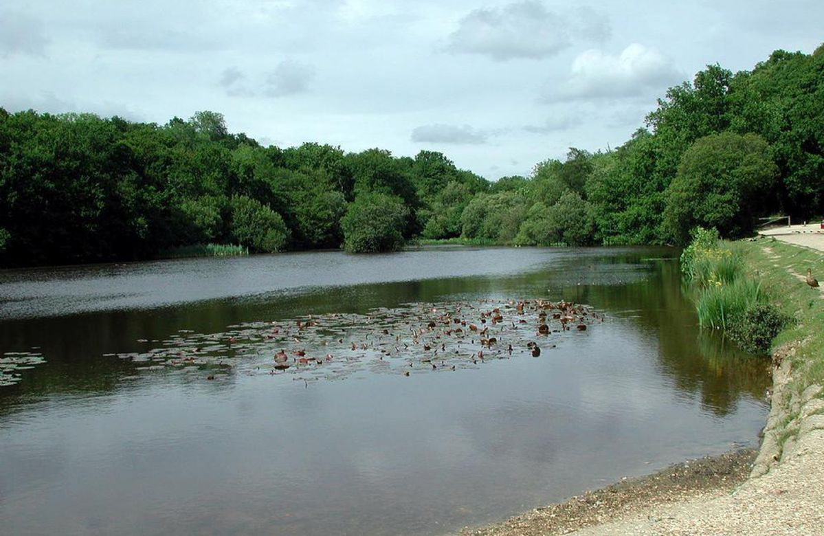 Eyeworth is a very pretty hamlet with a beautiful pond about 300 yards from the cottage with wild ducks