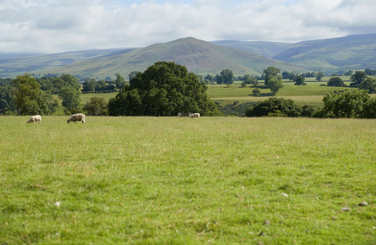 View of Dufton Pike from Glen Bank