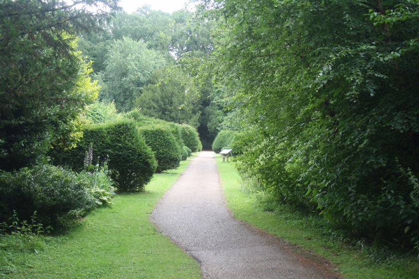 Road leading to the property