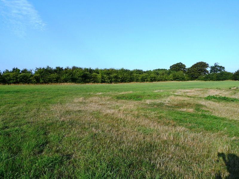 Field Barn House   Field view
