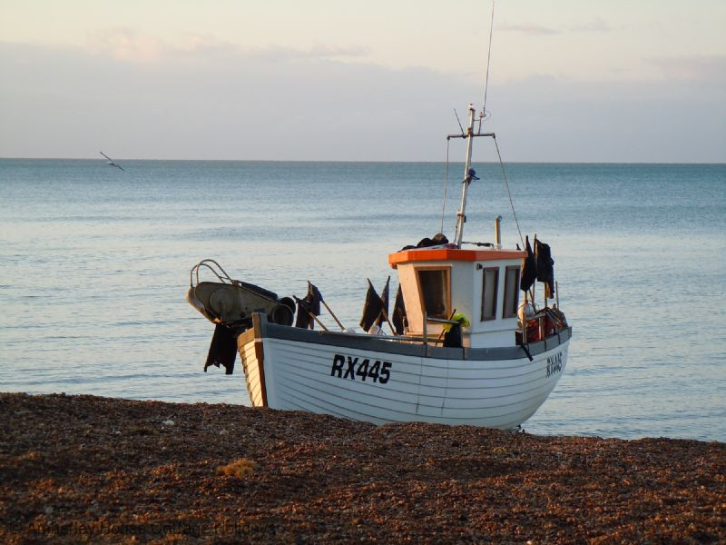 Large Image - Hastings