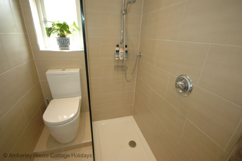 Large Image - A contemporary shower room