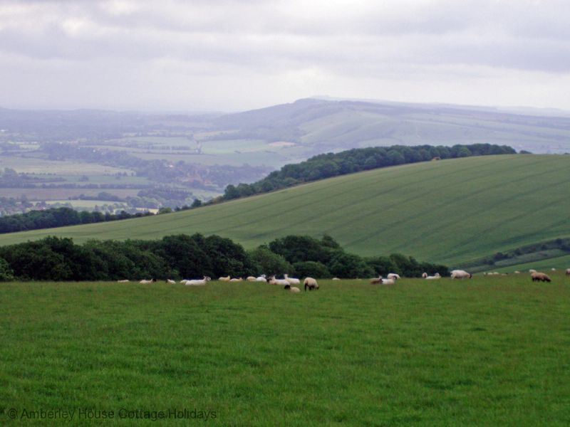 Large Image - The South Downs